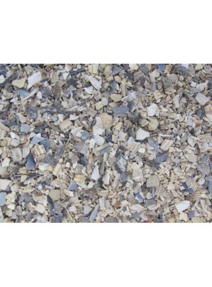 Ostriex - Casca de ostra Miuda 1Kg