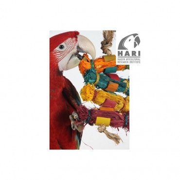 Hari - Brinquedo Natural 'Lacitos Coloridos'