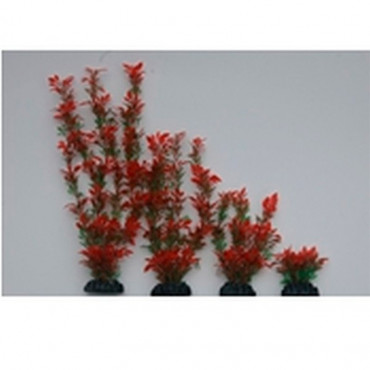 Planta Plástica 30cm Verde/Vermelha em Blister