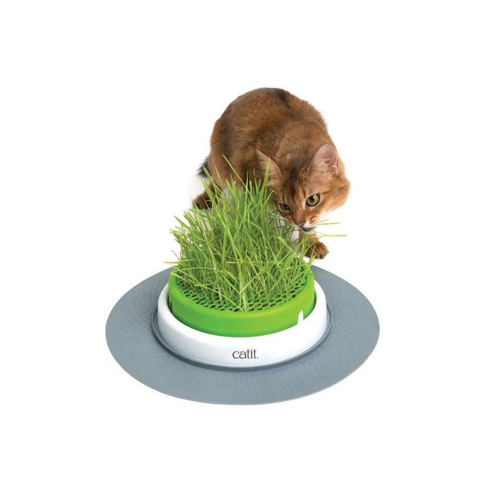 CATIT - Senses 2.0 Grass Planter Germinator
