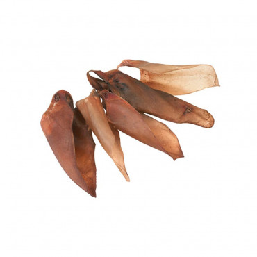 Orelha de Carne