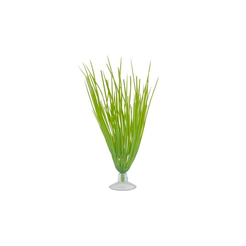 Marina Hairgrass 12,5cm c/ Ventosa
