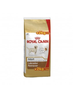Royal Canin - Labrador Retriever 12Kg+2Kg OFERTA
