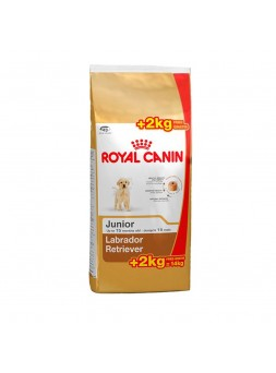 Royal Canin - Labrador Retriever Junior 12Kg+2Kg Oferta