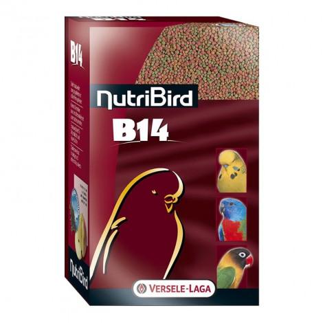 NutriBird B14 - Manutenção