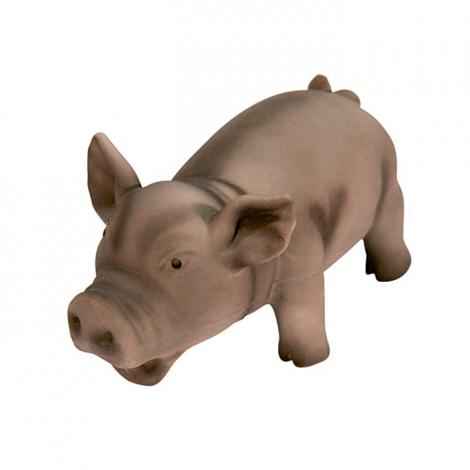 Porco de Latex