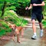 Trela p/ Jogging