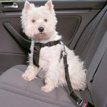 Cinto De Segurança p/ Cães