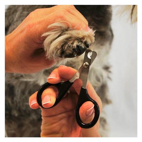 Corta Unhas p/ Gatos e Cães Pequenos (IBZ)