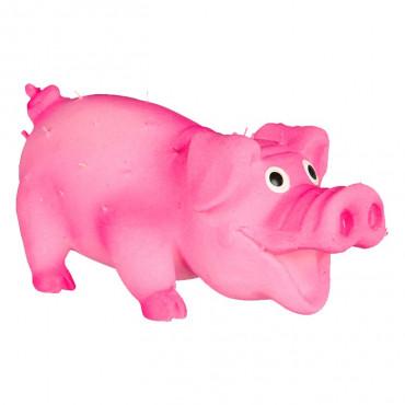 Porco em Latex