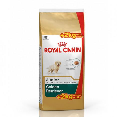Royal Canin - Golden Retriever Junior - Goldpet