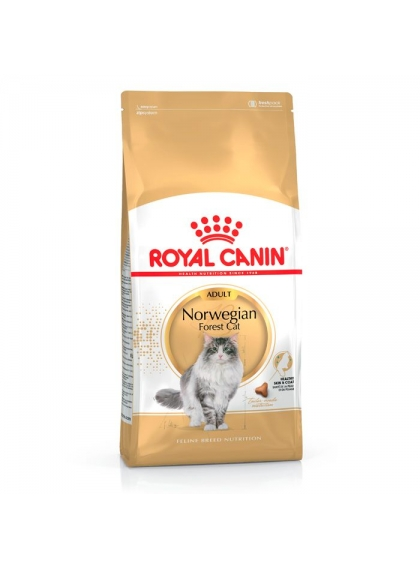 Royal Canin Cat - Norwegian Forest