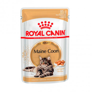 Royal Canin Maine Coon em mousse