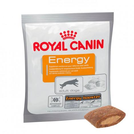 Suplemento para cão Royal Canin Energy