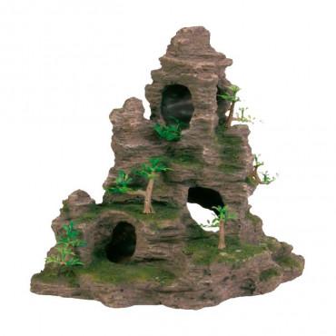 Escarpa Rochosa Alta com Cavidades e Plantas