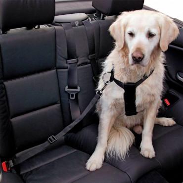Kerbl Cinto de Segurança para Cão