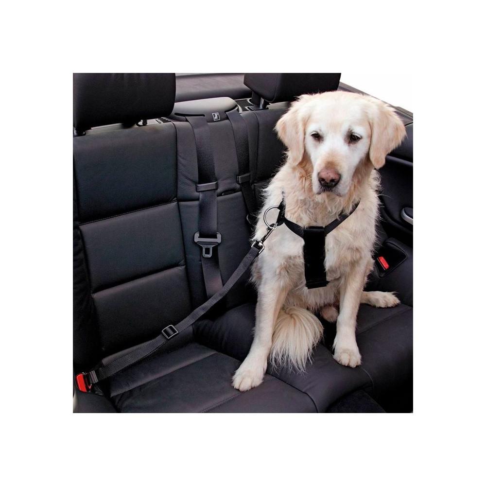 Cinto Segurança p/Cão