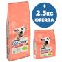 DOG CHOW - Sensitive 14Kg + 2.5Kg OFERTA