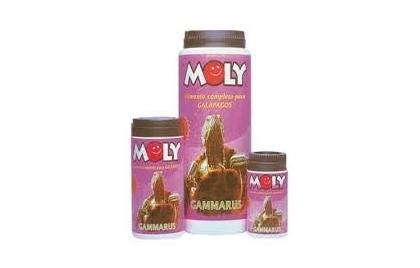 Moly - Gammarus