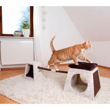 Conjunto de Equilíbrio para Gatos