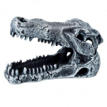 Sortido Crânios de Dinossauros