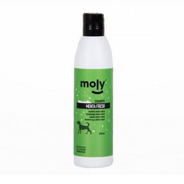 Moly - Champô Menta Fresh