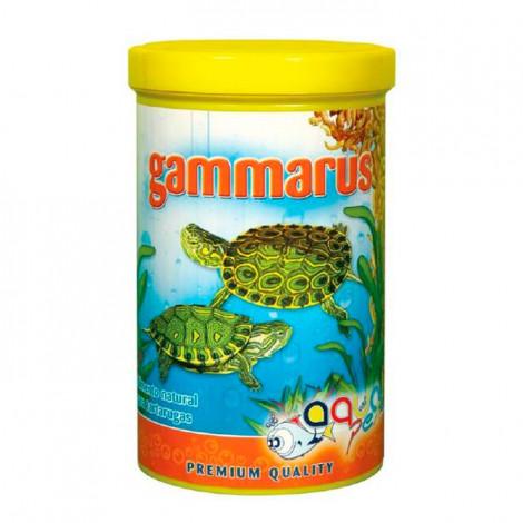 AQUAPEX - Gammarus