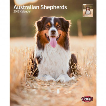 "Calendário ""Australian Shepherd"""