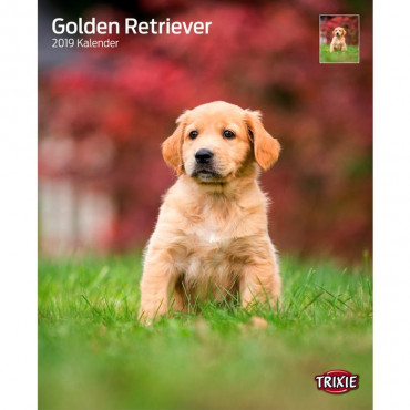 """Calendário """"Golden Retrievers"""""""
