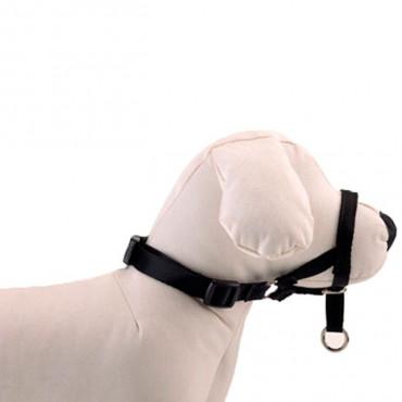 Moly - Açaime DOG CONTROL