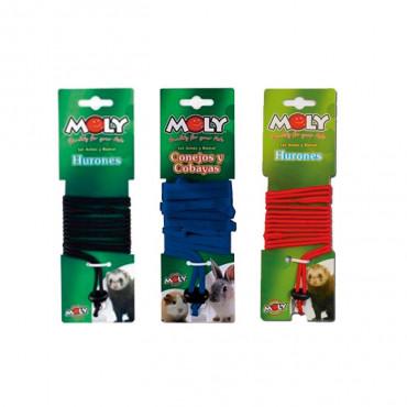 Moly - Trela + Peitoral em Nylon