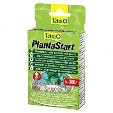 Tetra - PlantaStart (12comp.)
