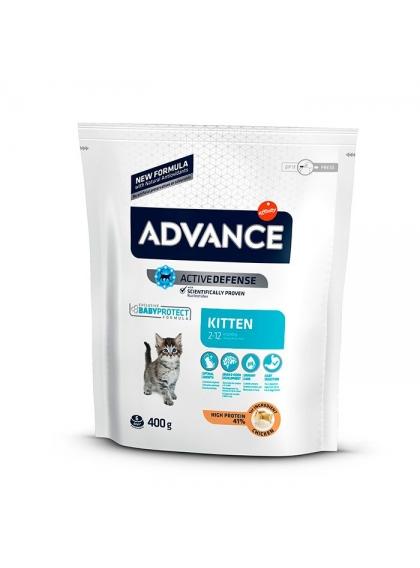 Advance - Kitten