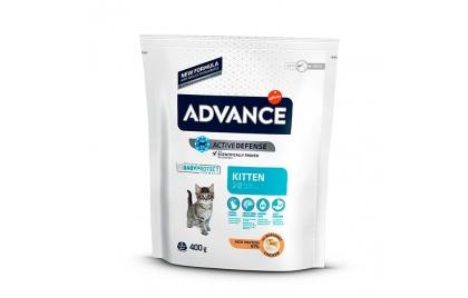 Advance Cat - Kitten