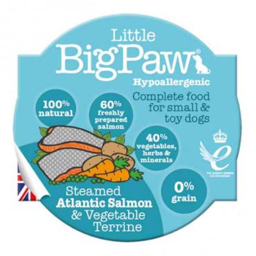 Little Big Paw - Salmão e Vegetais
