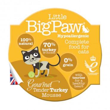 Little Big Paw Cat - Perú