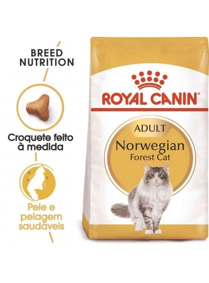Ração para gato Royal Canin Norwegian Forest