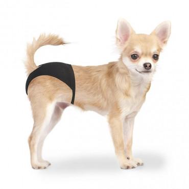 Duvo - Cuecas para cães