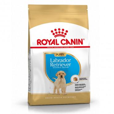 Ração para cão Royal Canin Labrador Retriever Puppy