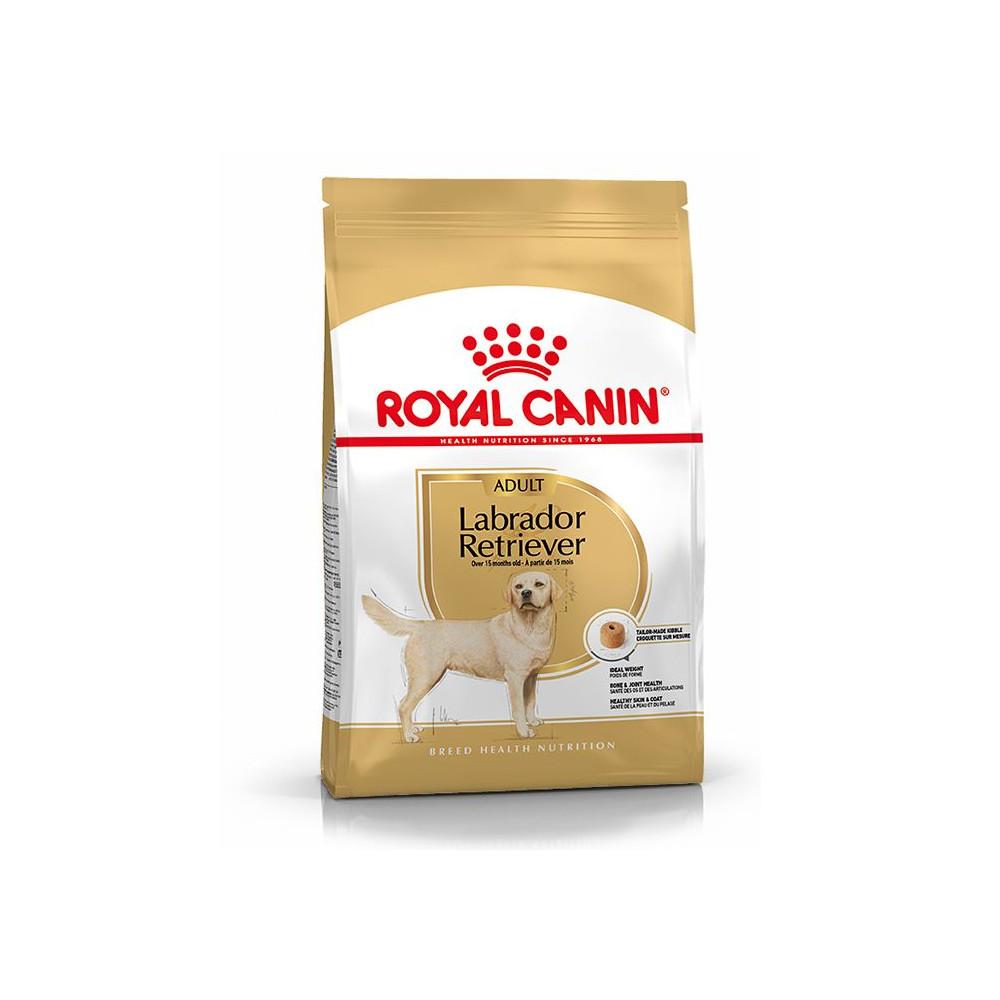 Royal Canin - Labrador Retriever