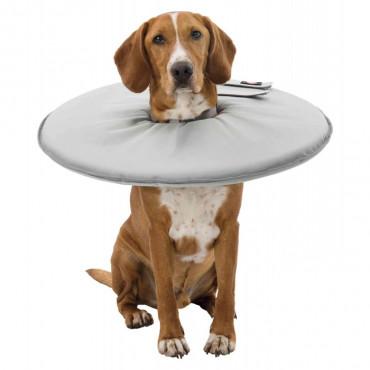 Colar Isabelino Flexível para Cão