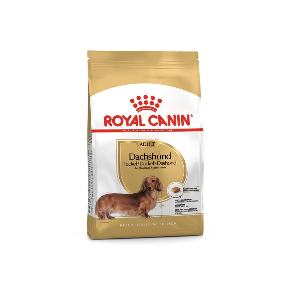 Royal Canin - Dachshund
