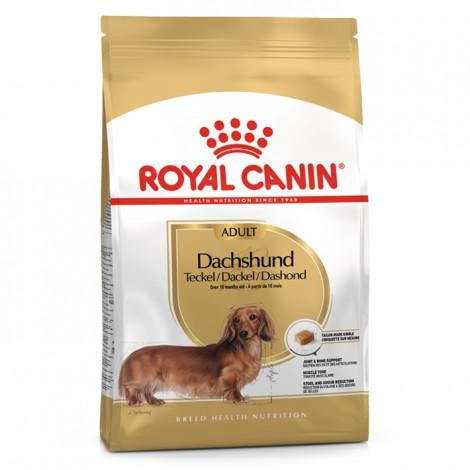 Royal Canin Dachshund Cão Adulto