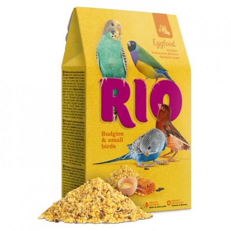 RIO Papa de ovo Periquitos e Pequenas Aves