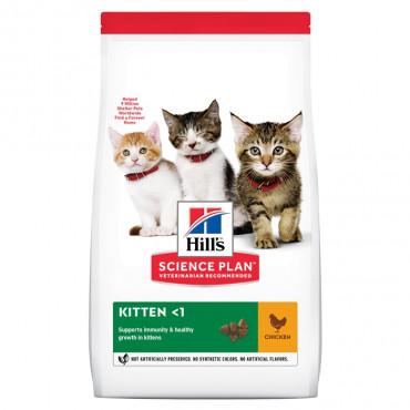 Hill's Gato Kitten - Frango