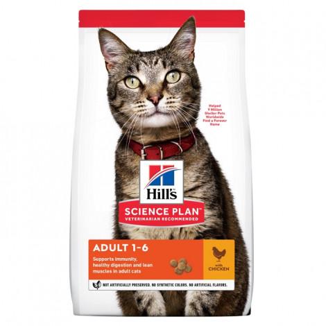 Hill's Gato adulto - Frango
