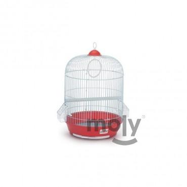 Moly Gaiola Manila para Aves