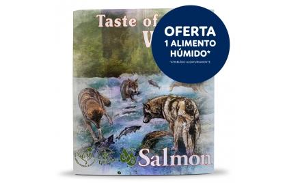 Taste of the Wild Húmido Cão - Salmão