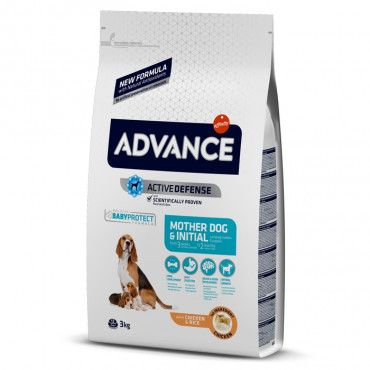 Advance - Mother & Initial Dog