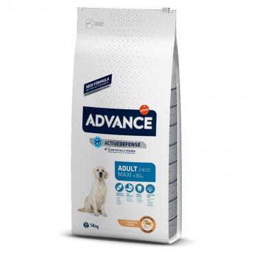 Advance Cão Maxi Adulto - Frango e arroz